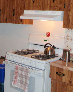 Stove with hood fan
